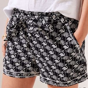 Loft Flamingo Black Shorts